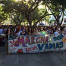 Foto: Thays Estarque/G1/http://g1.globo.com/pernambuco/noticia/2016/05/marcha-das-vadias-pede-fim-da-violencia-contra-mulher-no-recife.html.