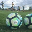 Atletas treinaram forte nesta terça-feira no CT. Foto: Fernando Ribeiro